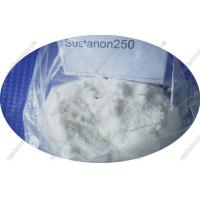 Injectable Raw Steroid Powders Testosterone Sustanon 250 for Male Muscle Building