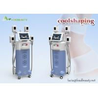 Buy cheap 2-3cm fat reduction Cryolipolysis / 2 working heads fat freezing / 12 hours non-stop working slimming from wholesalers