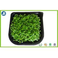 Buy cheap Plastic Seed Tray Blister Packaging Tray With Black For Plants Grown product