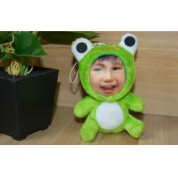Buy cheap Customization Frog DIY 3D Photo Face , Stuffed Plush 3D Face Dolls from wholesalers