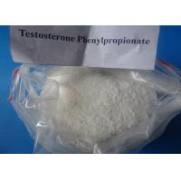 Buy cheap Injectable Raw Steroid Powder Testosterone Phenylpropionate For Muscle Building from wholesalers