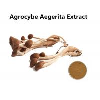 Buy cheap Organic Agrocybe Mushroom Extract Powder Anti - Aging , Medicinal Mushroom Extract Powder Cancer Treatment from wholesalers
