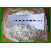 Buy cheap High Purity 99%+ Masteron Drostanolone Propionate Powder Deca Durabolin Bodybuilding from wholesalers