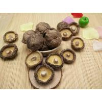 Buy cheap Factory Price Premium Thick Brown Dried Shiitake Mushroom Whole 4-6CM from wholesalers