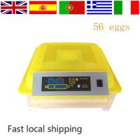 Buy cheap 220V Small Size chicken egg incubator price 56 Eggs of Best Selling with Cheap Price Mini Egg Incubator from wholesalers