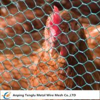 Buy cheap Chicken Wire Mesh|Florist Hex Netting 13~50mm Mesh Size for Building or Poultry from wholesalers