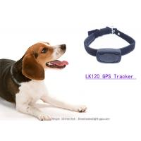 Buy cheap LKGPS gps tracker kids with Wifi (optional), support custom your own wrist band or animal from wholesalers