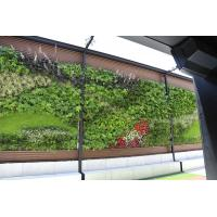 Buy cheap Artificial Green Wall with Thick Fake Quality Plants for Vertical Garden Wall Decoration from wholesalers