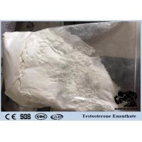 Buy cheap CAS 315-37-7 Test E Cutting Cycle Steroids Powder Testosterone Enanthate For Bodybuilder Fat Loss from wholesalers