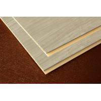 China WPC wall panel,wall board,ceiling on sale