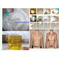China Male Enhancement Drugs Testosterone Enanthate Primoteston 99% Purity For Muscle Mass on sale