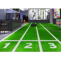Buy cheap Plastic Indoor Artificial Turf product