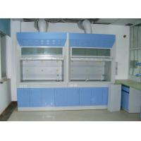 Buy cheap Chemical fume hood manufacturer in India ,fume hood manufacturer Malaysia. from wholesalers