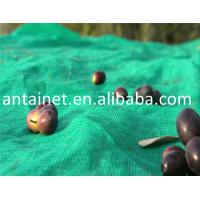 Buy cheap UV stabilized plastic olive harvest net from China product