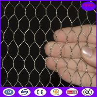 Buy cheap Hot Dipped Galvanized Chicken Wire Mesh , 50mm 2'' Bird Cage Wire Mesh from wholesalers