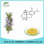Buy cheap Rosemary Leaf Extract Carnosic Acid / Rosmarinic Acid Powder from wholesalers