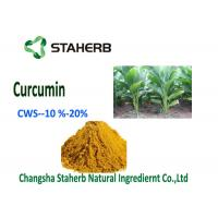 Buy cheap Natural Curcumin Organic Food Additives Turmeric Powder CWS - Curcumin 10% from wholesalers