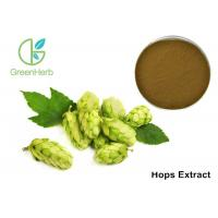 Buy cheap Herbal Medicine Herbal Plant Extract , Hops Extract Powder Humulus Iupulus L from wholesalers