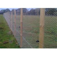 Buy cheap Electric Galvanised Chicken Wire Mesh , 2