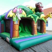 Buy cheap Fantastic 3D Artwork Children Inflatable Combo Funny Play And Slide Jungle Kingdom from wholesalers