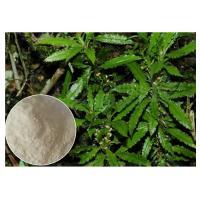 Improving Memory Plant Extract Powder Huperzine A 99% CAS 102518 79 6