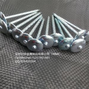 China Roofing Nail, Iron Nai, Straight rod roofing nail, Hemp rod roofing nail on sale