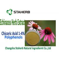 Buy cheap Natural Echinacea Purpurea Extract Chicoric Acid , Polyphenol , Echinacea extract from wholesalers