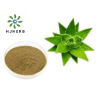 Buy cheap Food Grade Aloe Vera Extract Powder Herb Extract Powder from wholesalers