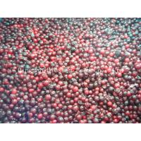 Buy cheap IQF Frozen lingoberry from wholesalers