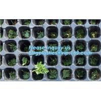Buy cheap plastic nursery tray seedling tray have different numbers cups,Plastic Flowers Seedling Hydroponics Nursery Trays, BIO from wholesalers