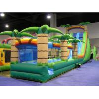 Buy cheap Durable Odorless PVC Outdoor Inflatable Water Slide Park Kids Game Fire Resistance from wholesalers