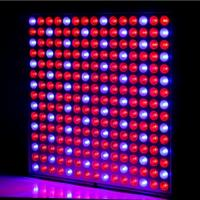 Buy cheap Full Spectrum Hot selling Slim 225PCS*0.2W 45W 3 Years Warranty Red + Blue color LED Grow Light from wholesalers