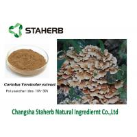Buy cheap Krestin PSK Antibacterial Plant Extracts , Coriolus Versicolor Mushroom Extract Polysaccharides from wholesalers