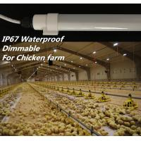 Buy cheap Dimmable T10 Chicken Farm Lighting , SMD2835 Led Tube Light With Connector from wholesalers