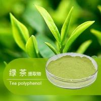 Buy cheap Organic Green tea extract, with active ingredients EGCG, L-theanine, Tea Polyphenol instant green tea extract powder from wholesalers
