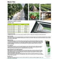 Buy cheap Mulch film,plant protect sleeve film w/hole,air-breath mulch film,silver,black, green,mulch film, pull-off hole,ldpe+lld from wholesalers