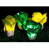Buy cheap LED Outdoor Simulation Plant Decorative Lamp Lawn Courtyard Lamp Simulation Chinese Cabbage Landscape Light from wholesalers