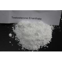 Buy cheap Buy Quality Raws Test E / Testosterone Enanthate Powder Source Best Price Online from wholesalers