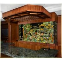 Cool fish tank quality cool fish tank for sale for Cool fish tanks for sale