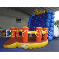 Buy cheap Outdoor backyard water Inflatable Sport Field Game for Adults Sports , Lilytoys from wholesalers