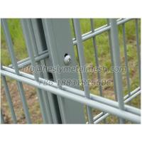 WM06 Double layer 656 welded Fence Mesh Panesl
