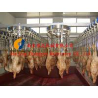 Buy cheap poultry slaughter line from wholesalers