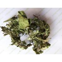 Buy cheap Mentha leaf Mentha haplocalyx dried leaves peppermint mint herbal tea traditional medicine bo he ye from wholesalers
