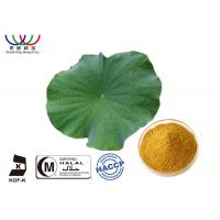 Buy cheap Dried Lotus Leaf Weight Loss , Chinese Quality Herbal Extracts Fat - Burner Flavonoids from wholesalers