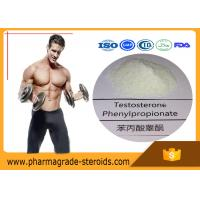 Buy cheap Anabolic Steroid Testosterone phenylpropionate for Muscle Building , No Side Effect from wholesalers