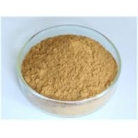 Buy cheap Astragalus Root Extract,Astragalus Root Extract lowering blood lipid,Astragalus Root Extract protect liver Manufacturer, from wholesalers