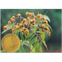 Buy cheap Yellow Brown Powder Soapberry Extract Cosmetic Grade For Bath Cream / Shampoo from wholesalers
