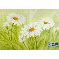 Buy cheap Polyester Fabric White Digital Printing Canvas Waterproof 30M For Photos from wholesalers