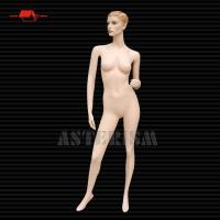 Buy cheap Female Mannequin B-007-3 (Make-Up) from wholesalers