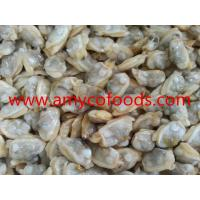 Buy cheap Clam Meat High Quality guaranteed at good price from wholesalers